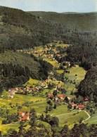 BLICK DURCH DAS GAISTAL NACH HERRENALB IM SCHWARZWALD - Bad Herrenalb