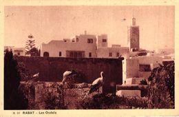 MAROC - RABAT - LES OUDAIA - Rabat
