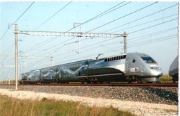 Le Chemin TGV 4402 Record Du Monde De Vitesse Sur Rail 574,8 Km/h - Treni