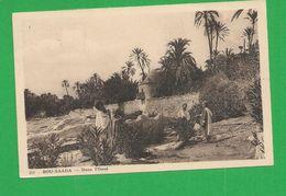 Carte Postales  ALGERIE BOU SAADA Dans L'Oued - Autres Villes