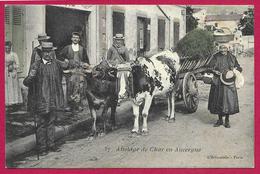 CPA Agriculture - Attelage De Char En Auvergne - Teams