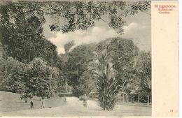 SINGAPORE   ---  Botanical  Garden - Singapour