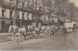 75( Un Fardier ) - Petits Métiers à Paris