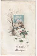 'Gelukkkig Nieuwjaar' - Winterscene - 1924 - Holland/Nederland - (IND 614) - Nieuwjaar