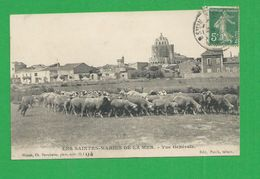 Carte Postales SAINTE MARIE DE LA MER Vue Generale Theme Mouton Chien De Berger - Saintes Maries De La Mer