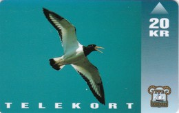 Faroe Islands, OD-007, Oystercatcher, Birds, Mint Only 15.000 Issued, 2 Scans. - Faroe Islands