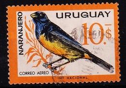 URUGUAY - 1963 -  Mi.Nr. 951 - Gestempeld/oblit./ Gebraucht/used. - ° - Uruguay