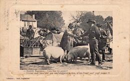 (16) Scène De Marché Foire - Cochons - Type Charentais - Angouleme Ed. Barraud - Angouleme