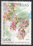 Grecia 2016 Sc. Origanum Dictamus Dittamo Di Creta Used Hellas Greece - Vegetazione