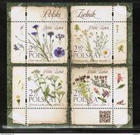 PL 2017 MI BL 265 Polish Herbarium - 1944-.... Republik