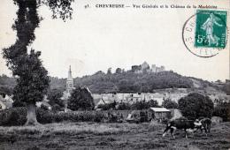 Chevreuse (Yvelines)  Vue Générale         LES 2 CARTES - Chevreuse