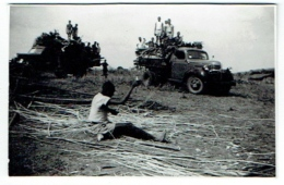 Foto/Photo. Congo. Camions. A Situer. - Africa