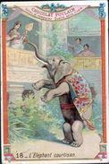 Chocolat Poulain, Legende Sur Les Animaux 2 ème Série, N°18, L'elephant Courtisan - Poulain