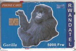 RWANDA - Gorilla, First Chip Issue 5000 Frw, Mint - Rwanda