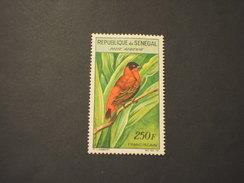 SENEGAL - P.A. 1960/3 UCCELLO  250 F. - NUOVO(+) - Senegal (1960-...)