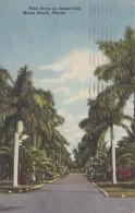 Florida Miami Beach Palm Drive On Sunset Isle 1953 Curteich