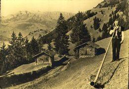 PRINCIPALITY OF LIECHTENSTEIN / A 69 - Liechtenstein