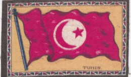 Flag Of Tunis (Tunisia) Cloth Or Felt(?) 13.6 X 8.8 Cm Size - Other Collections