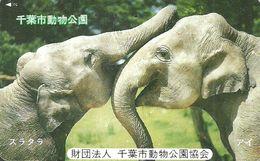 ELEPHANT * ANIMAL * Elephants * Japan - Télécartes