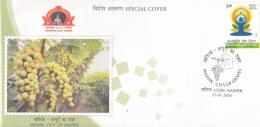 India  2016  Grapes Plant  Grapes Cancellation  NASHIK  Special Cover  #   04656   D  Inde Indien - Fruits