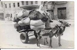 PAKISTAN, KARACHI, Donkey Cart - Pakistan