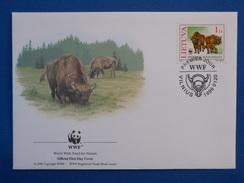 Bull, Bison, WWF - Koeien