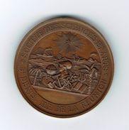 Médaille,Colonie,Île De La Réunion Exposition Des Beaux-art,1880,rare - Autres