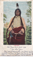 Cpa --chef Indien Chef Oglala Lakota Low Dog--combattant Avec Sitting Bull , Crazy Horse Au Little Bighorn - Indiani Dell'America Del Nord