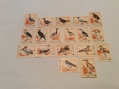 Vintage Set 18 Soviet 1977 USSR Stickers Matchbox Match Labels BIRDS Heron Crane Pelican And More - Matchbox Labels
