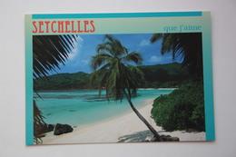 Les Seychelles MAHE - Postcard    1980s - Seychelles