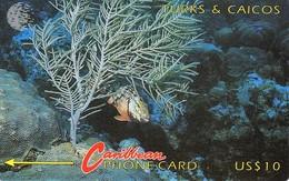 *TURKS & CAICOS - 4CTCA* - Scheda Usata - Turks And Caicos Islands