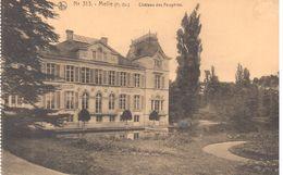 Château En Belgique - Melle - Château Des Fougères - 313 - Châteaux