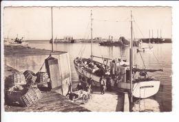 CP - 1959 - GRANVILLE - L'avant-Port - Arrivée De Chaussey - Granville