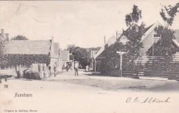 3575298Avenhorn, Het Hoog Met De Uitspanning. (poststempel 1905) - Nederland