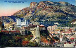 Monaco - Le Palais Du Prince Et La Tête De Chien (002078) - Fürstenpalast