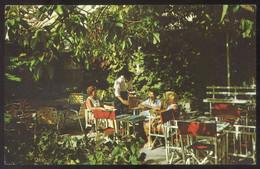 Barbados. Island Inn. *The Cool Tropical...* Nueva. - Barbados