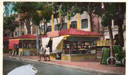 Cpsm TOUVA, Kiosque Bazar  (53.32) - Touva