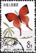 1963 - BUTTERFLIES - Michel Nr. 728 = 1,00 € - 1949 - ... Repubblica Popolare