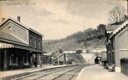 Nessonvaux - La Gare (animée, Edit L B G, W V S) - Trooz