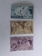 BERMUDES  1953-58  Lot # 2 - Bermudes