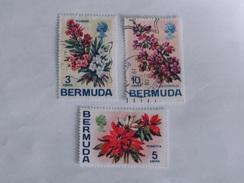BERMUDES  1970  Lot # 7  FLOWERS - Bermudes