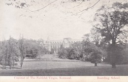 Convent Of The Faithfull Virgin Norwood, Boarding School (pk40700) - England