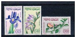 LOTE 1483 /// (C055)  MAROC - 480/482* MH  //  CATALOG./COTE: 5,75€    ¡¡¡¡¡¡ LIQUIDATION !!!!!! - Morocco (1956-...)