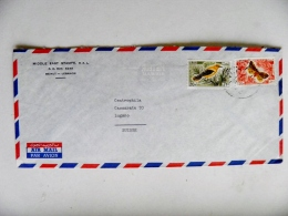 Cover From Liban Lebanon Sent To Switzerland Animals Insects Butterfly Papillon Bird Oiseau - Lebanon
