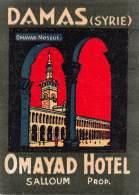 """07177 """"OMAYAD HOTEL  - DAMAS - SYRIE"""" ETICHETTA BAGAGLIO ORIG. - Hotel Labels"""