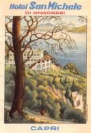 """07180 """"HOTEL SAN MICHELE DI ANACAPRI - CAPRI"""" ETICHETTA BAGAGLIO ORIG. - Adesivi Di Alberghi"""