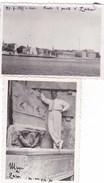 ZARA - CROAZIA - LOTTO DI DUE FOTOGRAFIE DEL 1935 E 1934 - Lieux