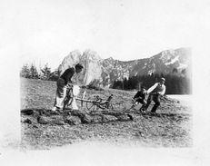 712y  04 Barcelonnette? Charrue Labourage à Main En 1939 - Barcelonnette