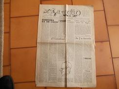 """8890-GIORNALE """"IL RAGLIO""""-ALESSANDRIA-PERIODICO DI VITA STUDENTESCA-N°. 4 E 5-1957 - Livres, BD, Revues"""