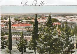Algerie : PERREGAUX  ( Vue Generale) - Algeria